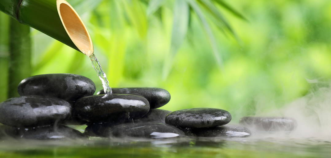 Image result for feng shui plants and fountain