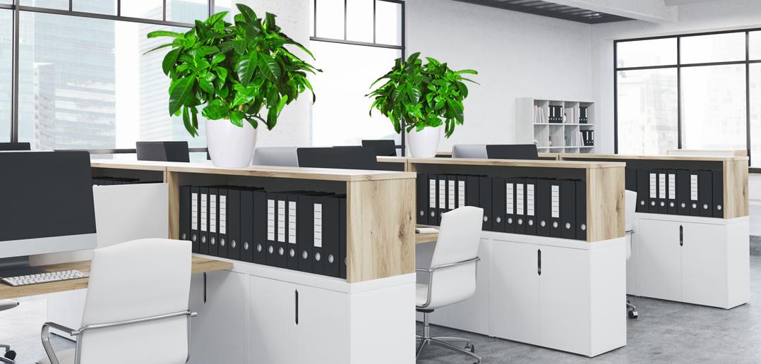Feng Shui Office Design