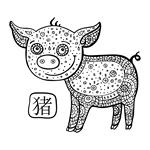 c-12-Pig